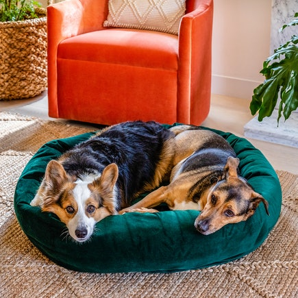 Dog Bed Royale Evergreen
